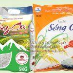 In túi nilon đựng gạo giá rẻ uy tín tại Hà Nội